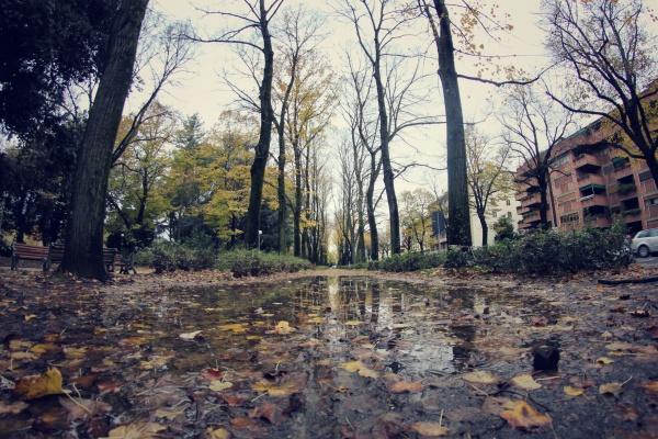 IMG_8866_Snapseed