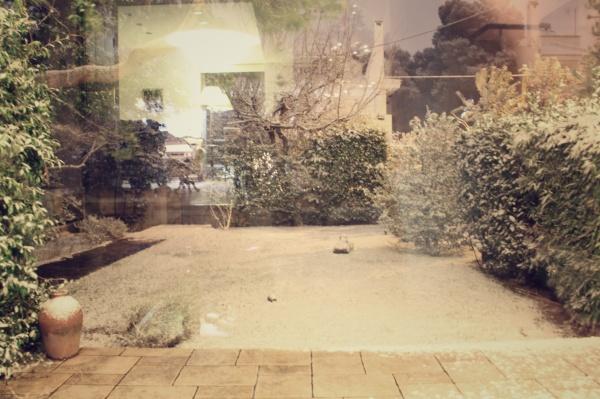 IMG_7259_Snapseed